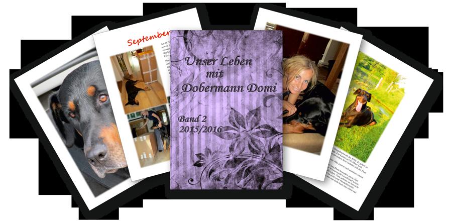 Buch des Monats September